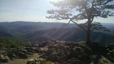 63 - Blue Ridge Parkway - Rock Point Overlook